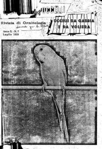 Giornale degli Uccelli 1959